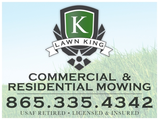 LawnKing_RealEstateSign_knoxville-wedding-photographer-downtown.jpg